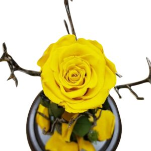 Rosa eterna amarilla