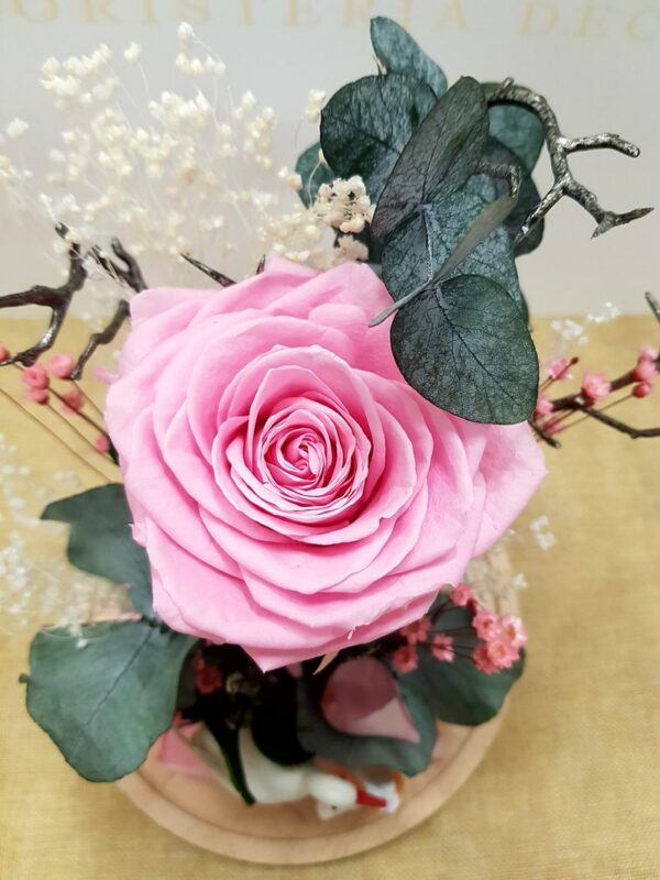 Rosa eterna nacimiento niña