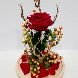 rosa eterna roja de flor roja