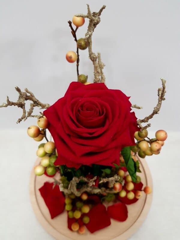 rosa eterna flor grande
