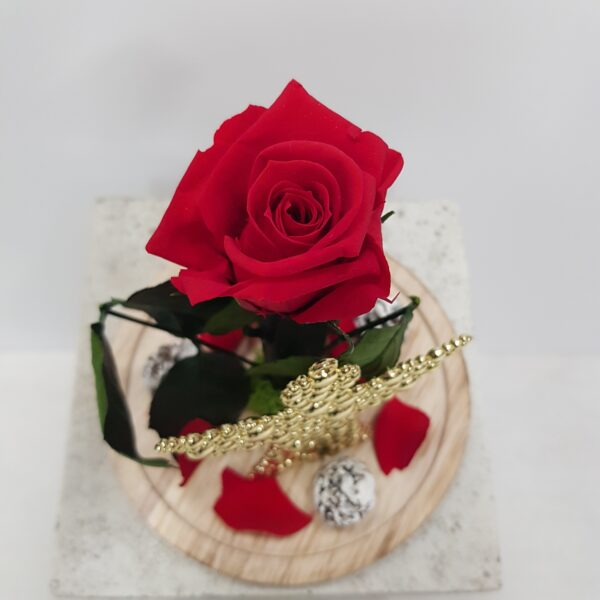 Rosa eterna decoracion navideña
